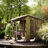 Rustic garden hideaway