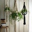 6 of the best hanging baskets