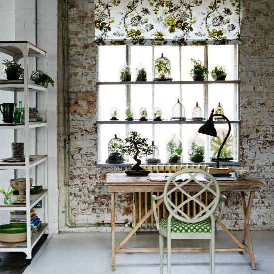 Plants on for Ways to hang plants inside