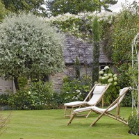 Pretty garden lawn with bamboo loungers
