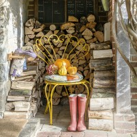 Wood-store porch with yellow peacock chair