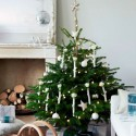 This year's Christmas tree trends