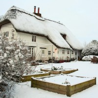 Be inspired by this charming Christmassy cottage in Hampshire