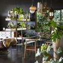 Get set for spring with these interior garden ideas