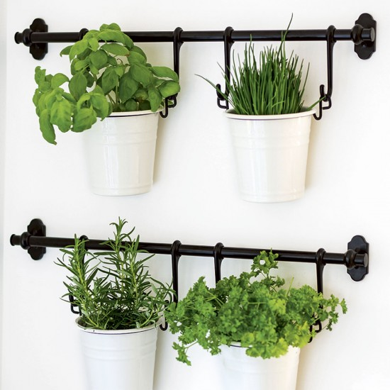 Hanging Herb Planters Take A Look Around This Spacious