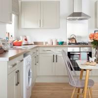 Pale green kitchen with pretty modern accessories